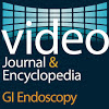 VIDEO JOURNAL GI ENDOSCOPY
